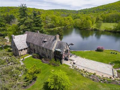 Dutchess County Single Family Home For Sale: 4 Willow Lake Drive