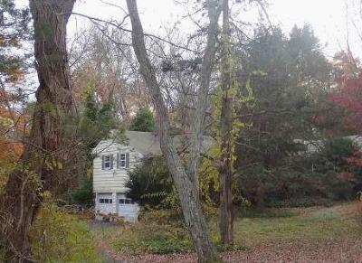 Stamford Single Family Home For Sale: 164 Janes Lane