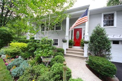 Fairfield County Single Family Home For Sale: 20 Juhasz Road