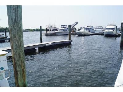 Old Saybrook Condo/Townhouse For Sale: 142 Ferry Road #5-22