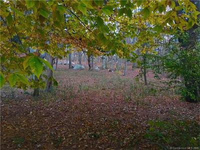 Stonington Residential Lots & Land For Sale: 200 C Mistuxet Avenue