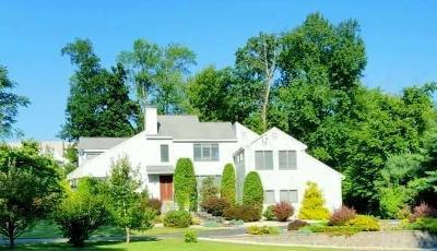 Farmington Single Family Home For Sale: 21 Valley View Drive