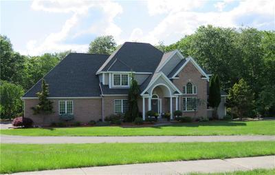 Rocky Hill Single Family Home For Sale: 220 Speno Ridge