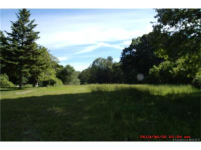 Putnam Residential Lots & Land For Sale: 216 Grove Street
