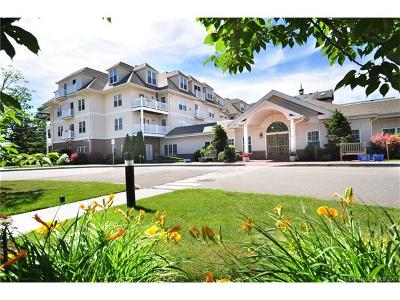 West Hartford Condo/Townhouse For Sale: 237 Fern Street #117E