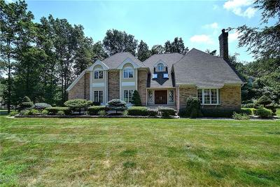 Southington Single Family Home For Sale: 350 North Star Drive