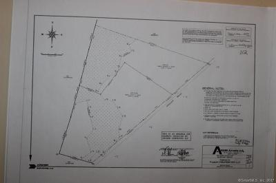 Brooklyn Residential Lots & Land Show: 0&00 Windham Road