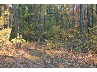 Woodbury Residential Lots & Land For Sale: 88 Quail Run Road