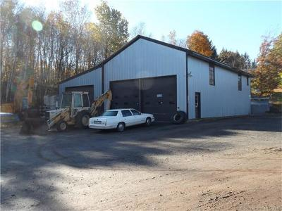 Plymouth Commercial For Sale: 99 Wolcott Road
