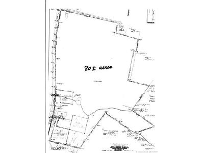 Sharon Residential Lots & Land For Sale: 170 Amenia Union Road