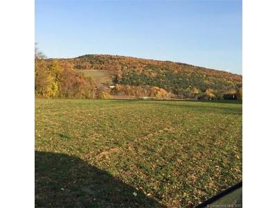 Millerton Residential Lots & Land For Sale: 132 Taylor Road