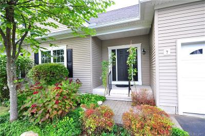 Watertown Condo/Townhouse For Sale: 166 Ice House Road #7