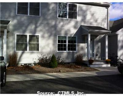 North Canaan Condo/Townhouse For Sale: 76 North Elm Street #1E
