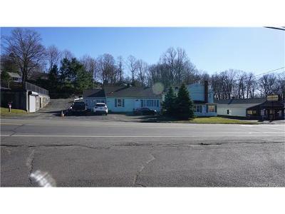 Meriden Commercial For Sale: 1395-1403 East Main Street