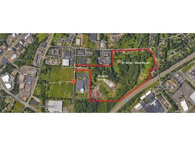 Orange Residential Lots & Land For Sale: Edison Road