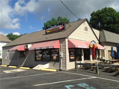 Plainville Commercial For Sale: 77 Whiting Street