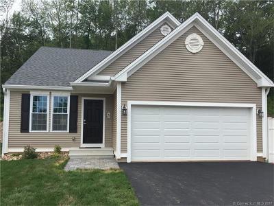 Middletown Single Family Home For Sale: 15 Webster