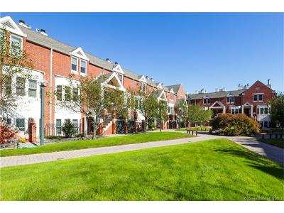 New Haven Condo/Townhouse For Sale: 95 Audubon Street #302