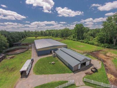 Ellington Single Family Home For Sale: 7 Country Farm Lane