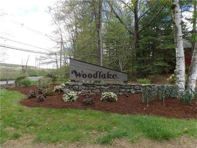 Woodbury Condo/Townhouse For Sale: 3 Clubhouse Drive #3