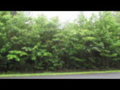 Residential Lots & Land For Sale: 41 Lakeshore #13