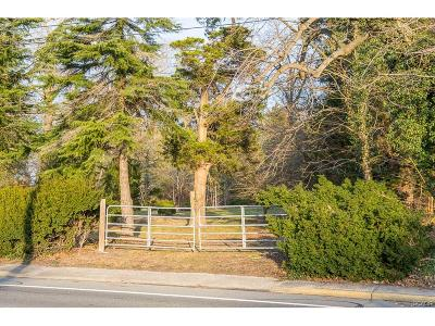 Georgetown Residential Lots & Land For Sale: 225 South Bedford Street