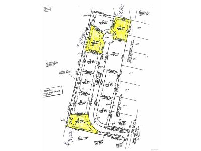 Residential Lots & Land For Sale: 26043 Mary's Lane #9