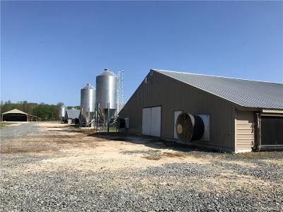 Farm For Sale: 9092 Old Dagsboro