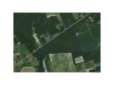 Laurel Residential Lots & Land For Sale: 0000 County Seat Hwy