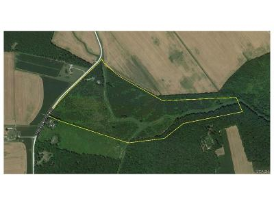 Bridgeville Residential Lots & Land For Sale: 17107 Progress School