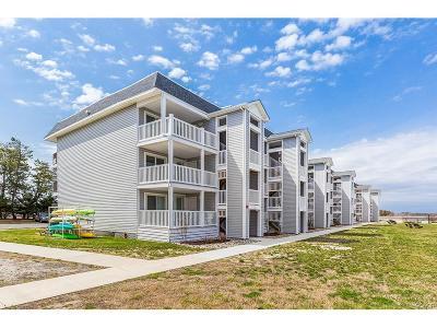 Condo/Townhouse For Sale: 30142 Cedar Shores Rd. #341E