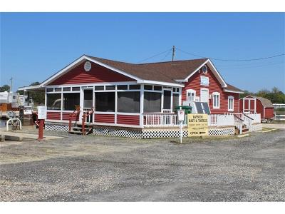 Single Family Home For Sale: 36085 Long Neck Rd