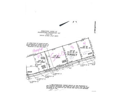 Bridgeville Residential Lots & Land For Sale: Lot 3 Sand Hill Rd. #3