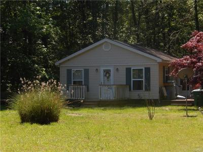 Single Family Home For Sale: 24019 Pine Lake