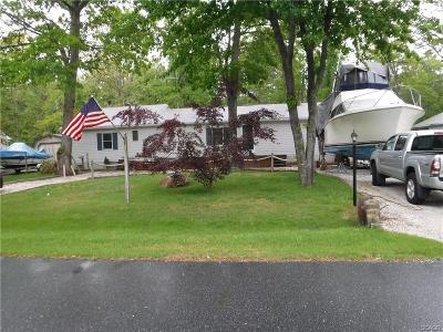 Single Family Home For Sale: 27658 Avalon