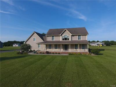Seaford Single Family Home For Sale: 140 S Paula Lynne Dr.