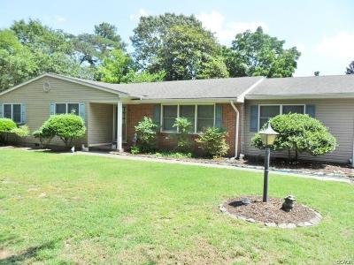 Seaford Single Family Home For Sale: 7542 Rivershore Drive
