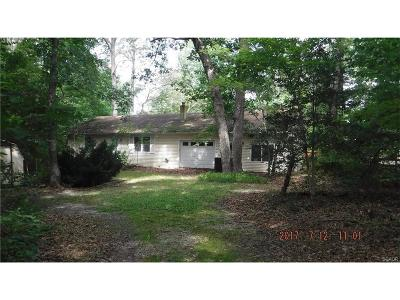 Sussex County Single Family Home For Sale: 23999 Pine Lake