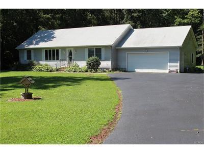 Bridgeville Single Family Home For Sale: 16154 Progress School