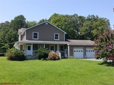 Sussex County Single Family Home For Sale: 100 Sunset Strip
