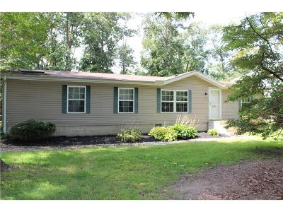 Single Family Home For Sale: 30785 White Oak Road