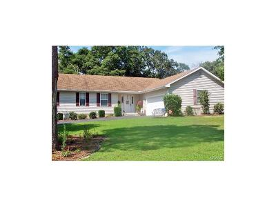 Seaford Single Family Home For Sale: 7791 Nanticove Drive