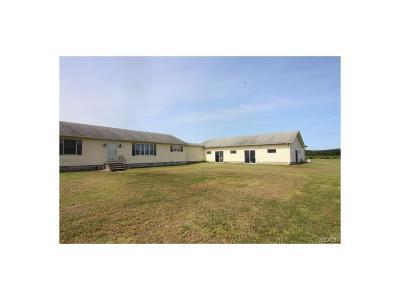 Harrington Single Family Home For Sale: 7587 Whiteleysburg Rd