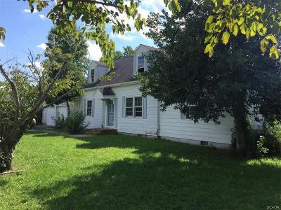 Single Family Home For Sale: 21784 Zoar