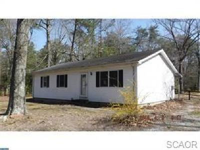 Sussex County Single Family Home For Sale: 3525 Bowman