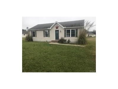 Sussex County Single Family Home For Sale: 30863 Penn