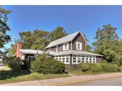 SOUTH REHOBOTH Single Family Home For Sale: 30 Brooklyn Avenue
