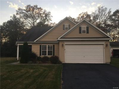 Sussex County Single Family Home For Sale: 23178 Pine Run Drive
