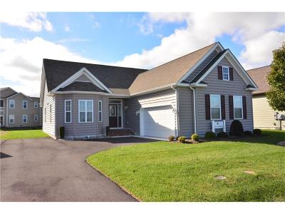 Milford Single Family Home For Sale: 27 Homestead Blvd