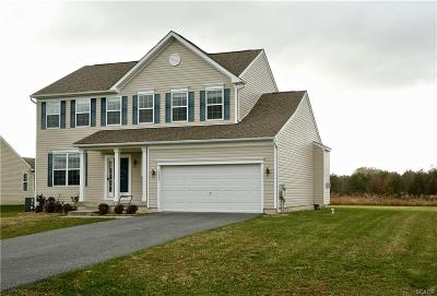 Sussex County Single Family Home For Sale: 24926 Rivers Edge